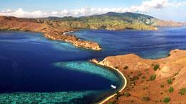 Rinca Island - Flores Dragon Tour