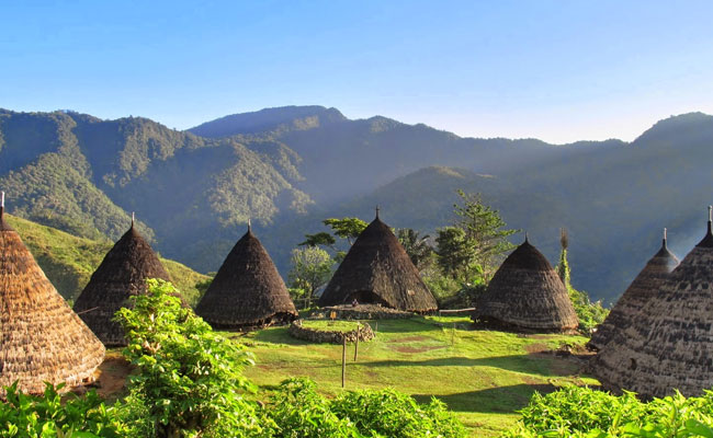 Wae Rebo - Flores Dragon Tour
